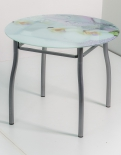 Стол со стеклом СС05 Z730С